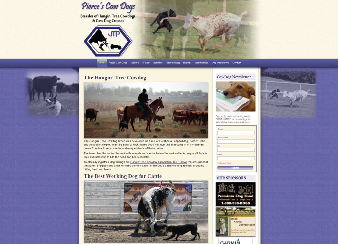 Hanging tree cow dogs for sale - Home Of The Hangin Tree Cow Dog