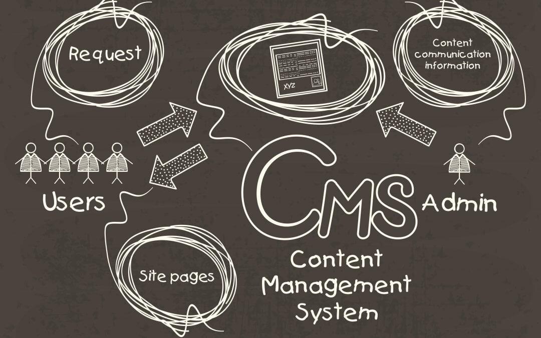 Brochure or CMS Website?
